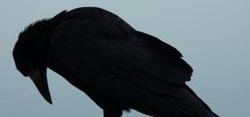 Le più belle frasi di Edgar Allan Poe
