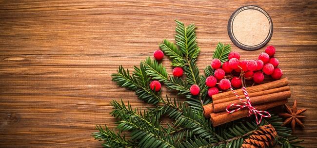 6b9815950d8 Frasi per aspettare il Natale – Frasi Celebri .it