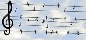 Frasi belle di canzoni