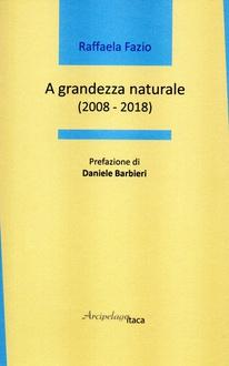 Frasi di A grandezza naturale. 2008-2018