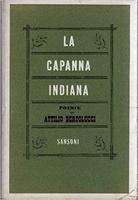 Frasi di La capanna indiana