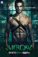 Frasi di Arrow
