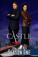 Frasi di Castle - Detective tra le righe