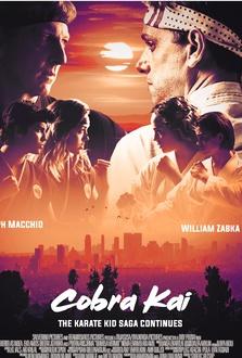 Serie TV Cobra Kai