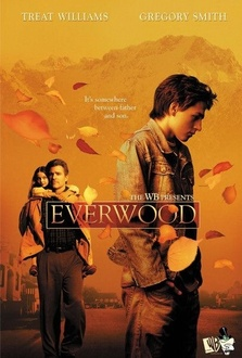 Serie TV Everwood