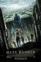 Frasi di Maze Runner - Il Labirinto