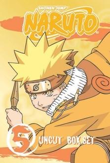 Cartone Naruto