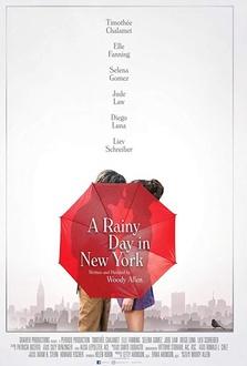 Film Un giorno di pioggia a New York