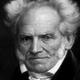 Frasi di Arthur Schopenhauer