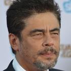 Immagine di Benicio del Toro