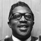 Immagine di Bo Diddley