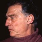 Frasi di Emilio Tadini