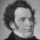 Frasi di Franz Peter Schubert