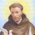 Immagine di San Francesco d'Assisi