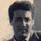 Frasi di Giuseppe Martini