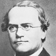 Frasi di Gregor Johann Mendel