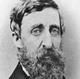 Frasi di Henry David Thoreau
