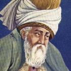 Immagine di Rumi