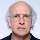 Immagine di Larry David