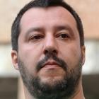 Immagine di Matteo Salvini