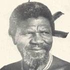 Immagine di Ngwenyama Sobhuza II