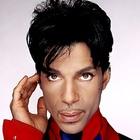 Immagine di Prince