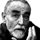 Immagine di Vittorio Gassman
